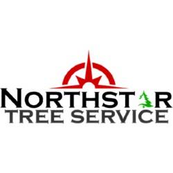 Tree Service, Tree Removal,